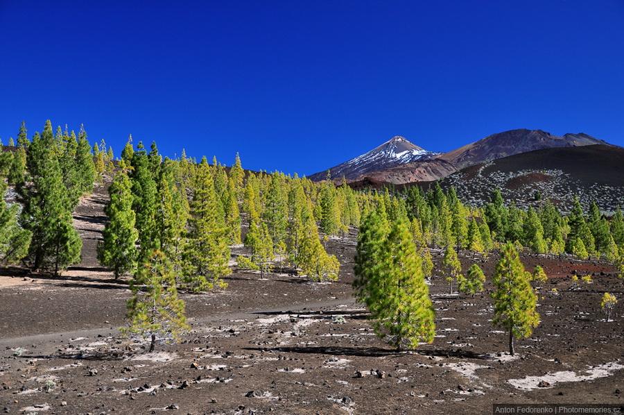 Ел Тейде - самый высокий вулкан Европы