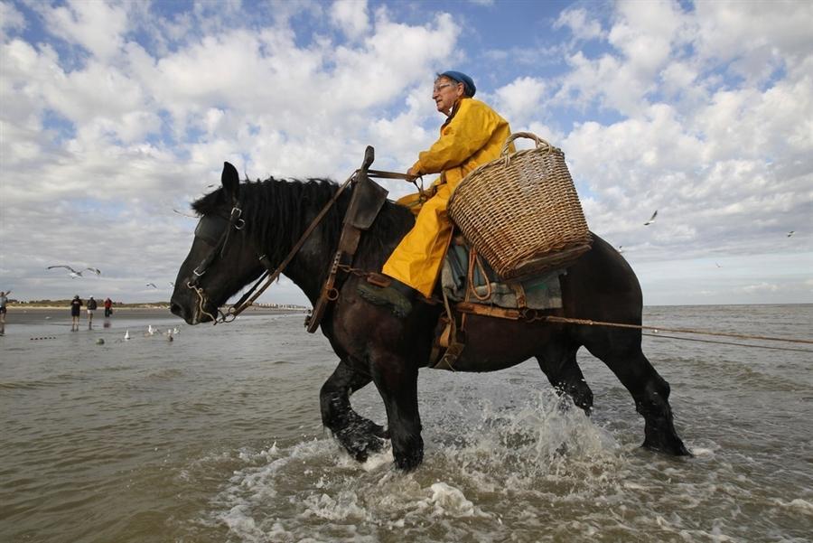 Верховая рыбалка в Бельгии
