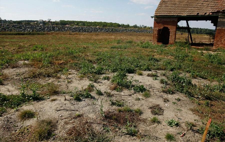 Сентябрь 2010, Колонтар, понемногу восстанавливается травяной покров, оставшееся строение