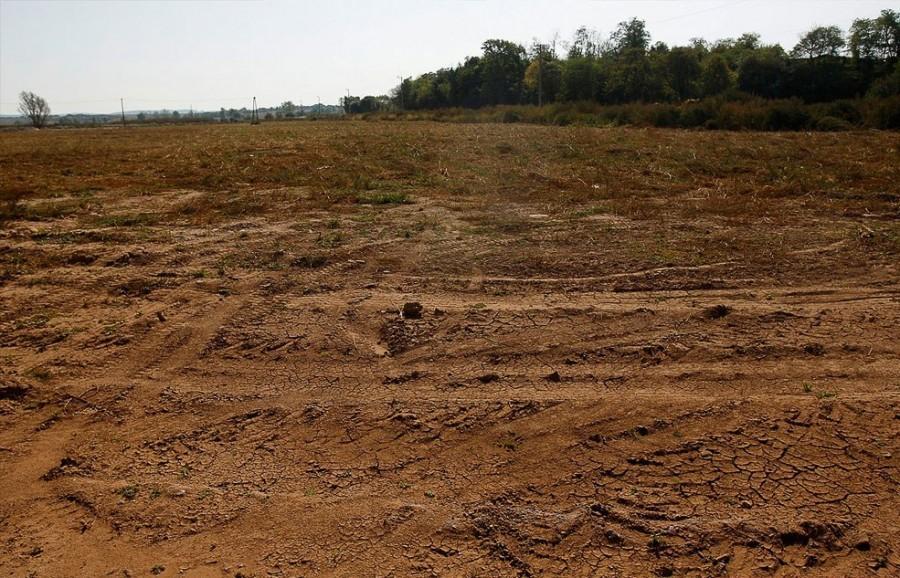 Сентябрь 2011, Колонтар, от бывшей улицы осталось чистое поле