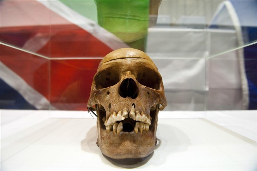 Один из черепов, возвращенных Намибии