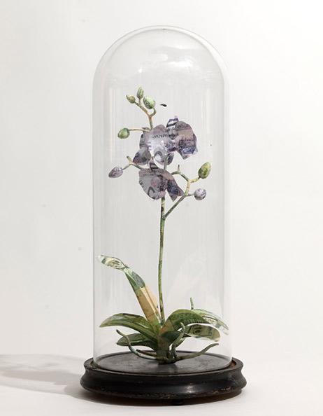 Орхидея - проволока, саудовские риалы