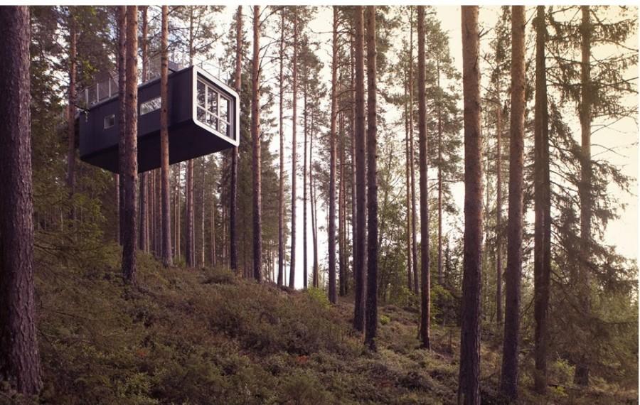 К номеру ведет длинный горизонтальный мост, проложенный между деревьями