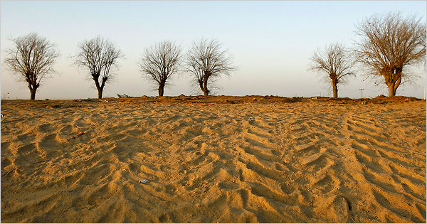 Иссушение почвы в Европе