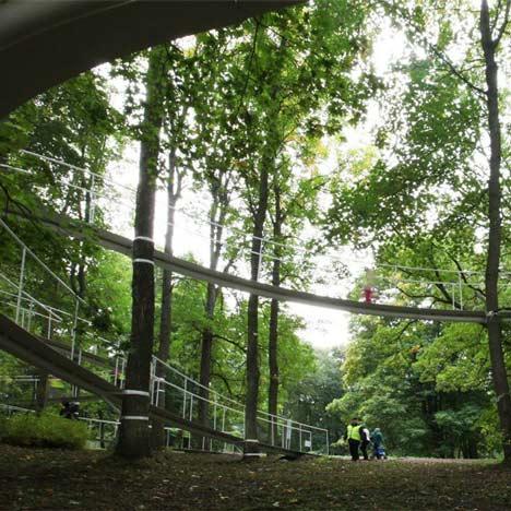 Плывущая тропа сквозь 300-летний лес