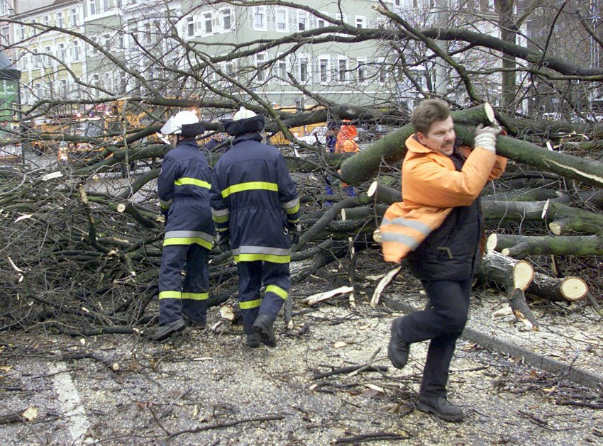 Последствия шторма во Франции, декабрь 1999 года