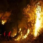 Пожарные ведут бой с огнем в Castanheira de Pera, Центральная Португалия