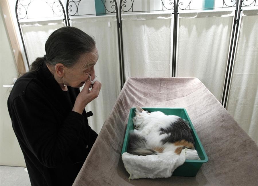 Прощание 86-летней Аурелии Декерс перед кремацией со своей 13-летней любимицей Титин