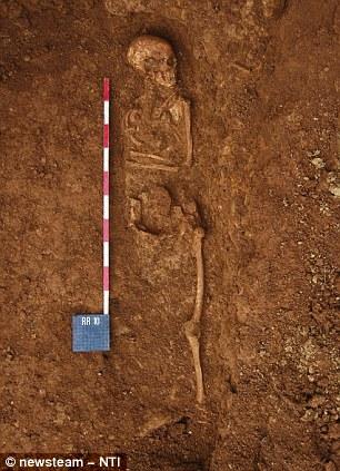 Один из найденных скелетов