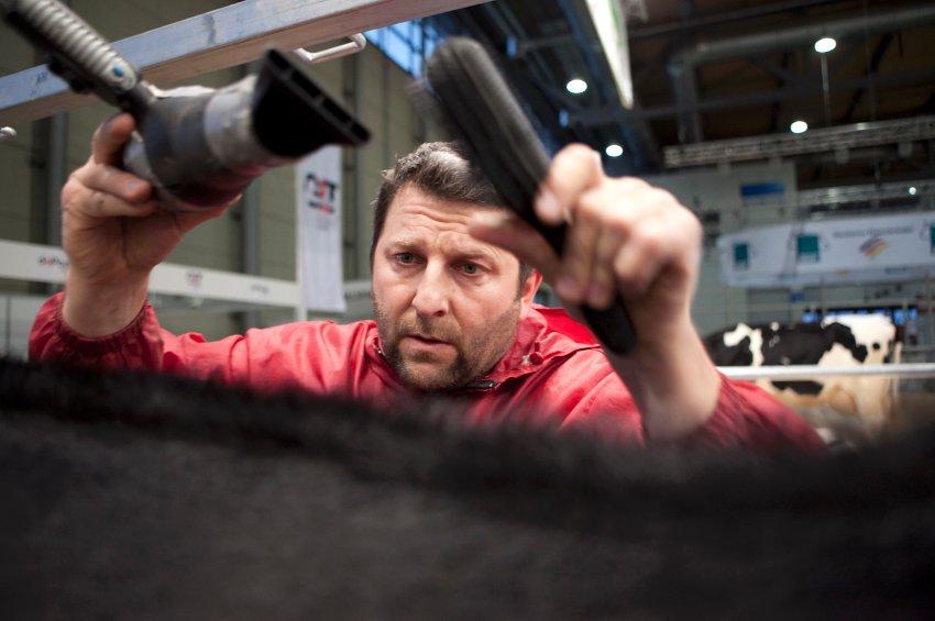 Хинрих Хенке чистит, стрижет и готовит коров к выставкам