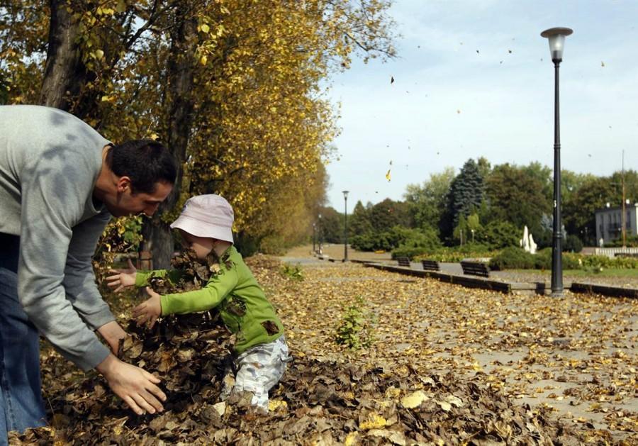 Отец с ребенком играют с опавшими листьями в Силезском парке культуры и отдыха в Хожуве, на юге Польши