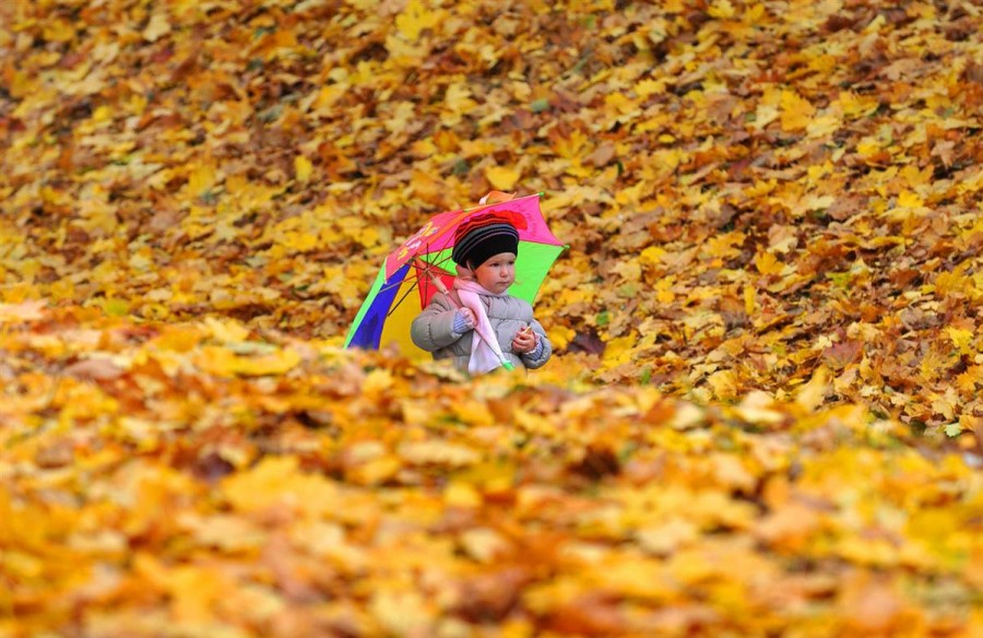 Девчушка прогуливается по парку Минска
