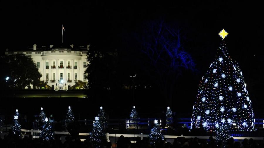 Рождественская ель рядом с Белым Домом в США