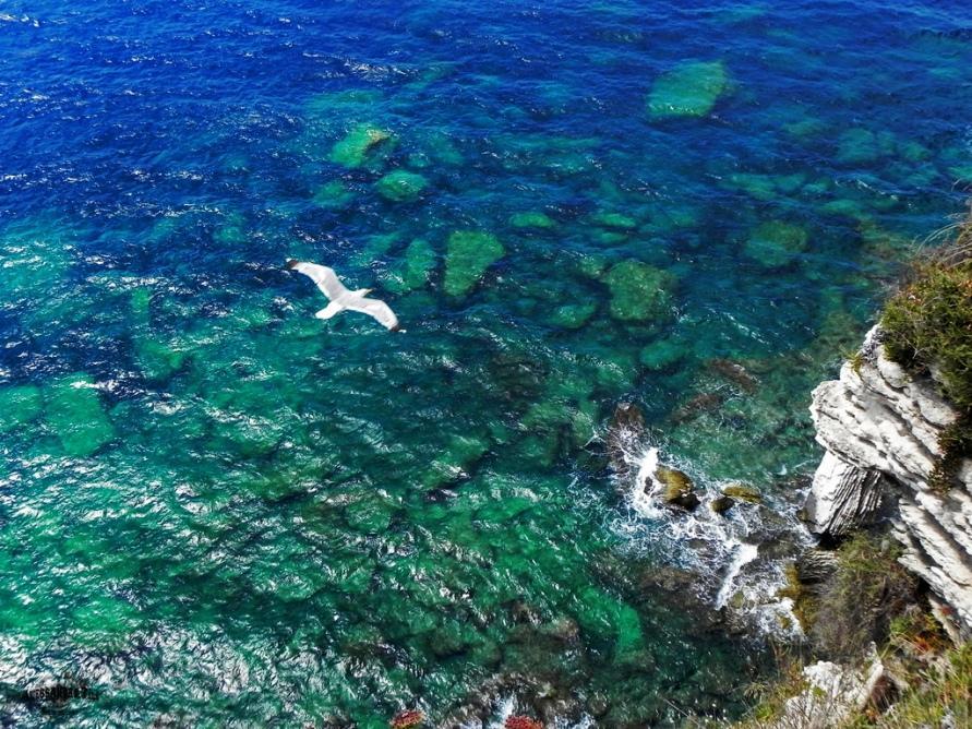 Bonifacio на острове Корсика