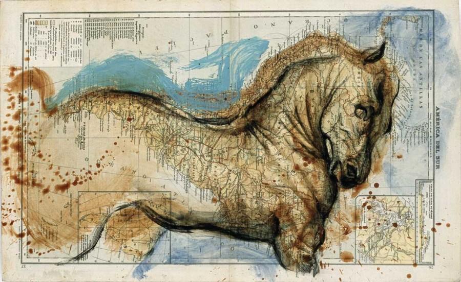 Лошадь, Америка