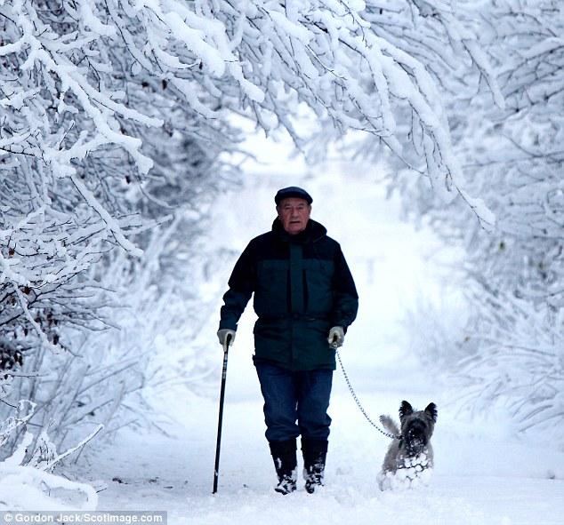 Это больше похоже на Сибирь, 6 дюймов снега за одно утро