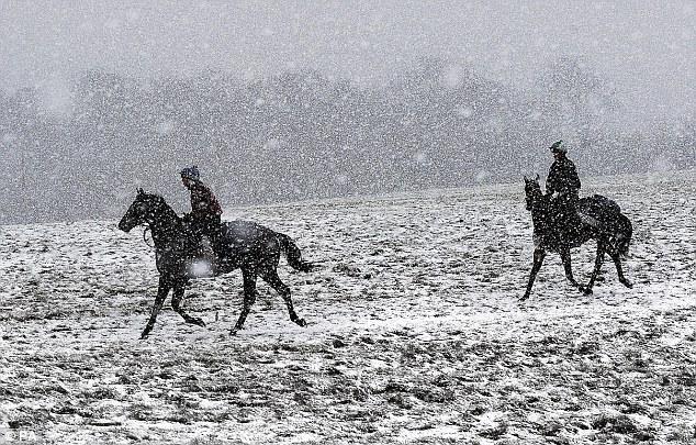 Тренировки жокеев прошли в сплошном снегопаде