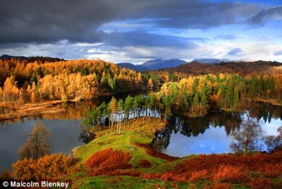 Золотая осень в Тарн Хоуз, Камбрия