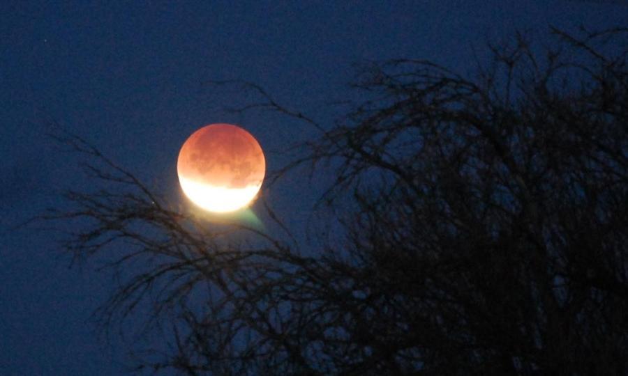 Частичное лунное затмение из штата Аризоны