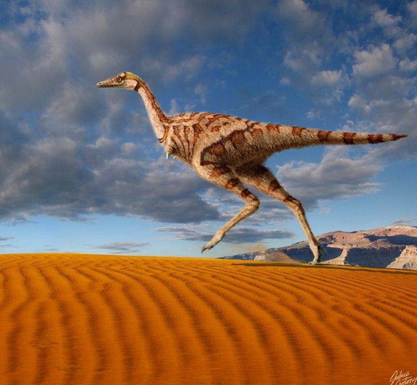 Китайские палеонтологи обнаружили в конце января странный вид динозавров, которые имели один только коготь-палец вместо передних конечностей
