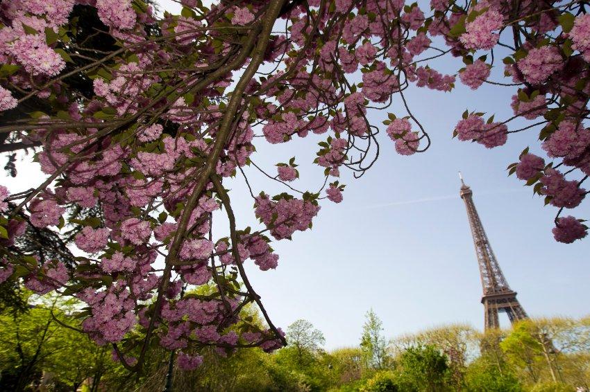 Эйфелева башня станет Зеленым символом Парижа