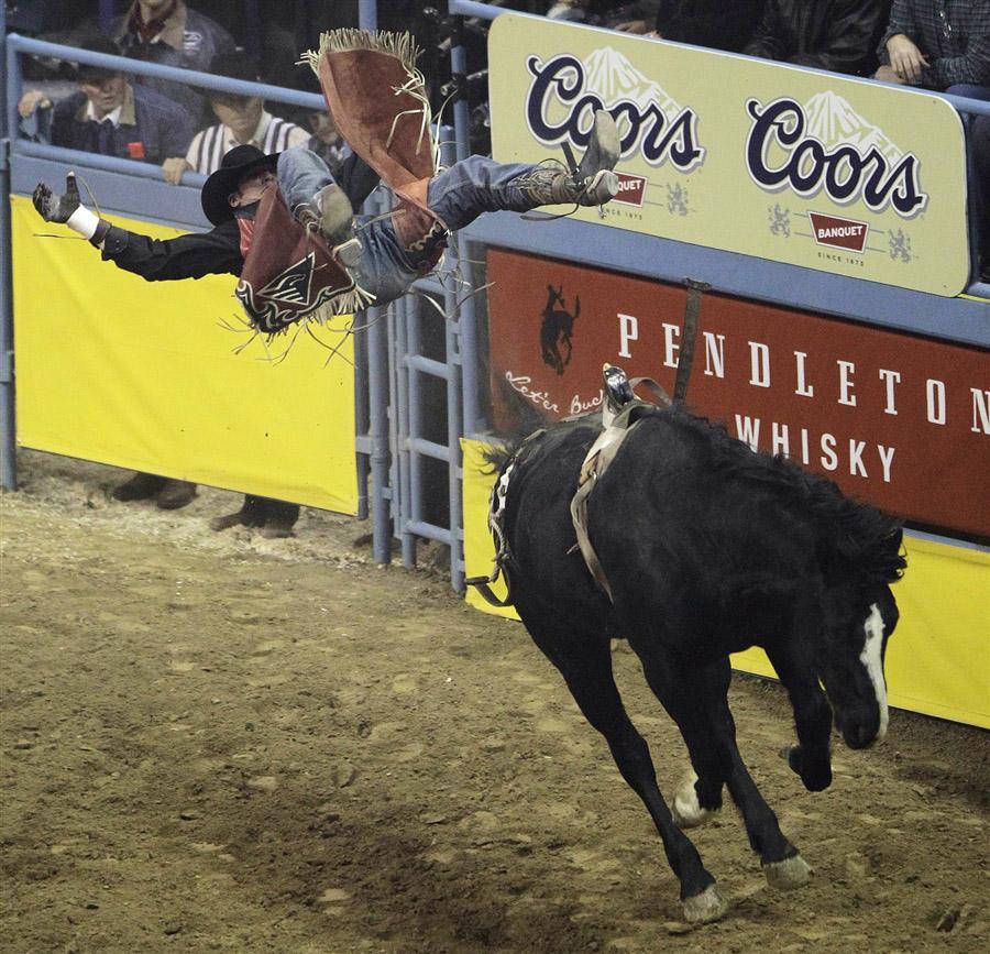 Ковбой слетает с лошади во время верховой езды без седла на родео в Лас-Вегасе, 8 декабря