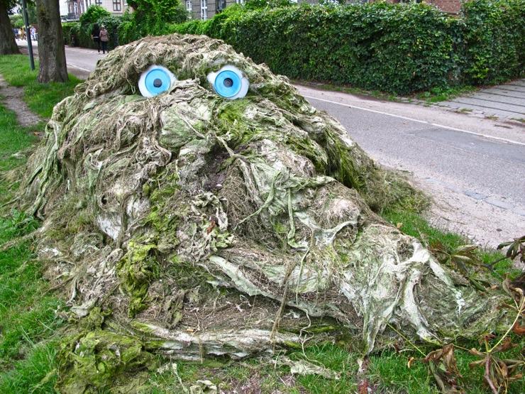 Глазастая куча водорослей в Дании