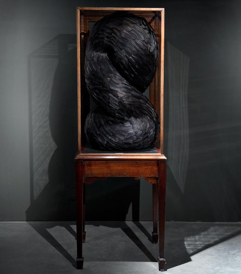 Приманка - перья вороны и антикварный шкаф из красного дерева