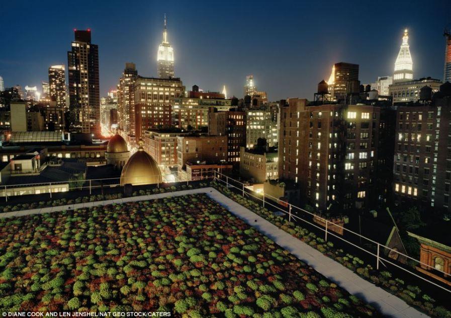 Манхэттен, крыша архитекторов Кук и Фокс в Нью-Йорке
