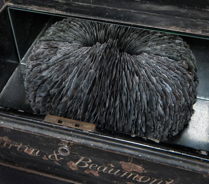 Сach? - смешанная техника голубиных перьев и антикварного стола