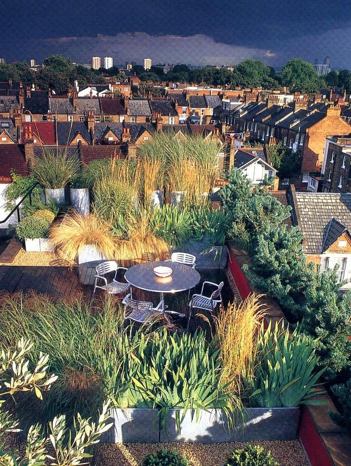 Частный сад Кристофера Брэдли на севере Лондона
