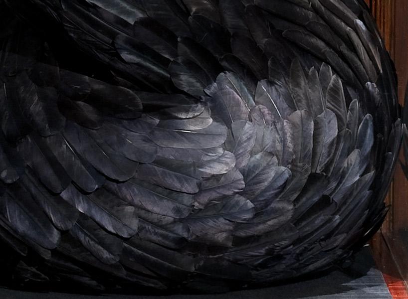 Укрупненное изображение Приманки