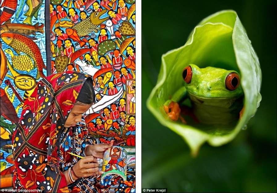 На первом снимке - индийская народная художница в Калькутте, на втором - маленькая лягушка в листе
