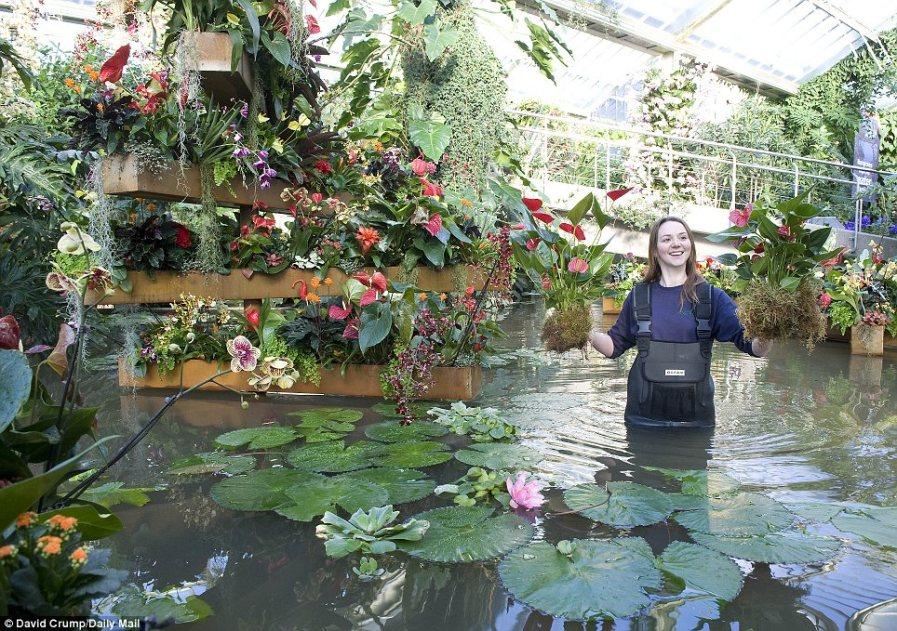 Потрясающий новый пруд с лилиями начинает обретать форму