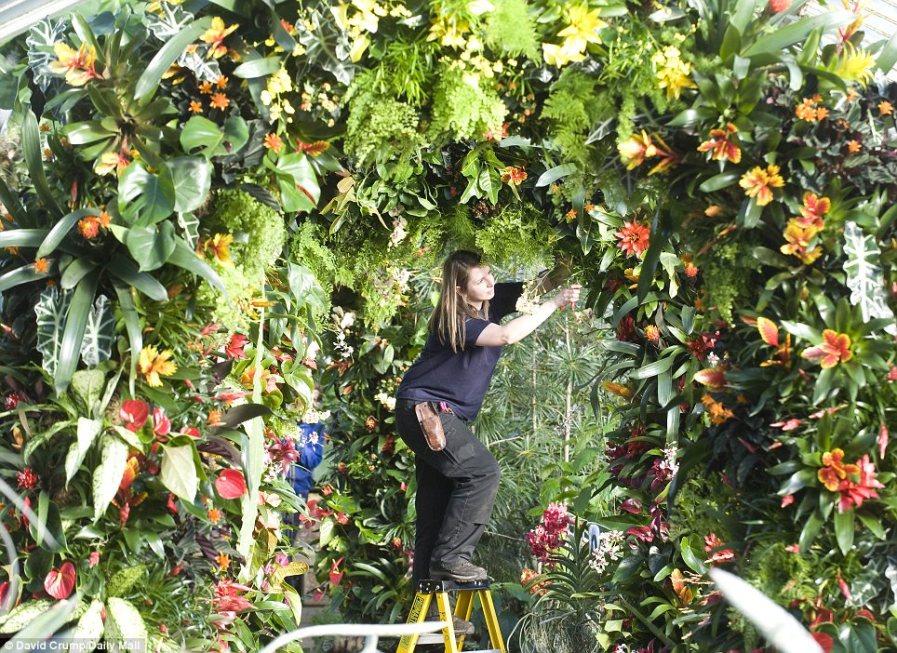 Секретный сад: Линдсей Ханки добавляет последние штрихи к цветочной арке