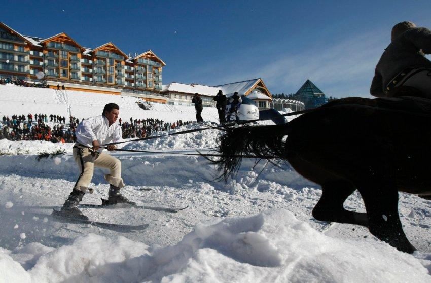 Многие участники едут за лошадью на лыжах