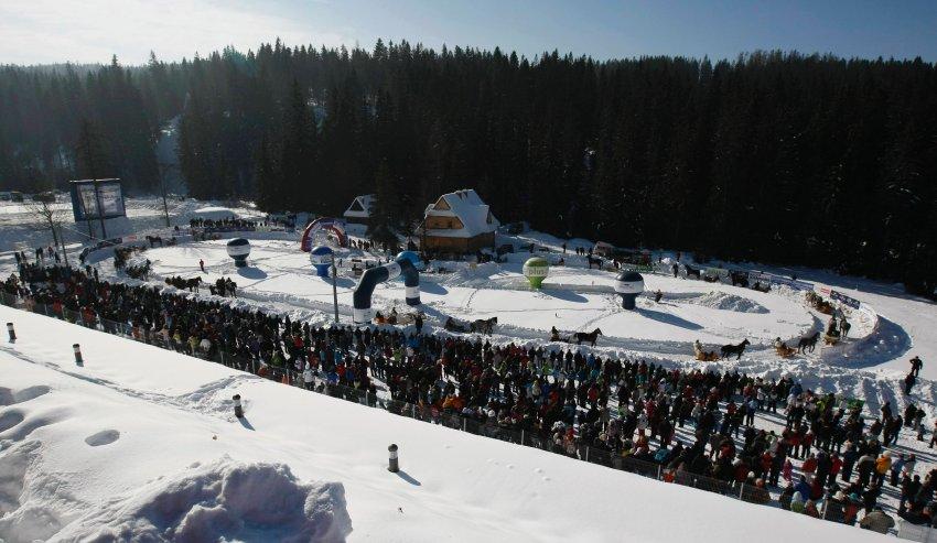 Снежная гонка является кульминацией зимних праздников, туристы приезжают со всей Польши, чтобы увидеть зрелище