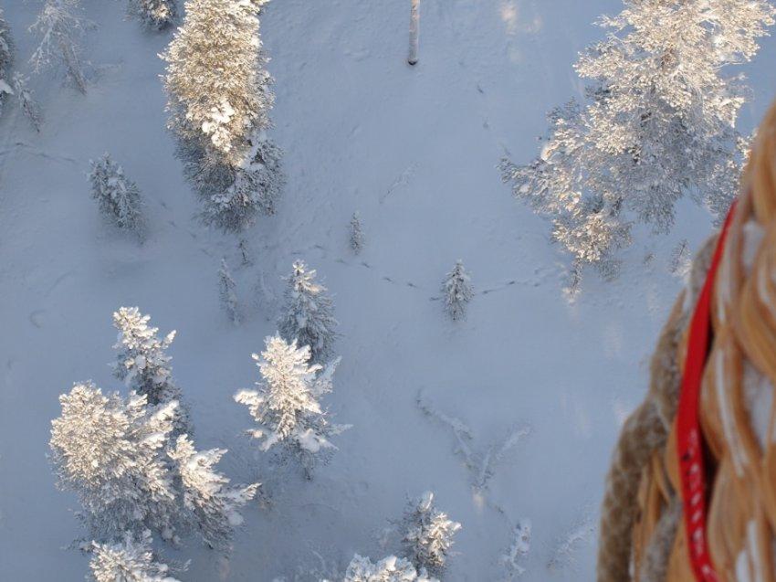 Зимний пейзаж словно в сахарной пудре