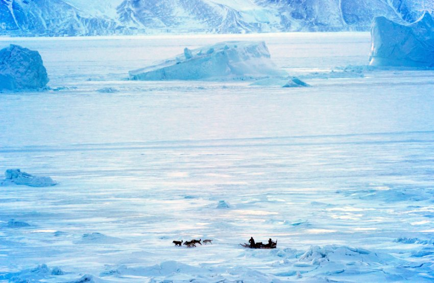 Каждый день охотники ездят на санях на замерзшее море охотятся на тюленей или ловят рыбу