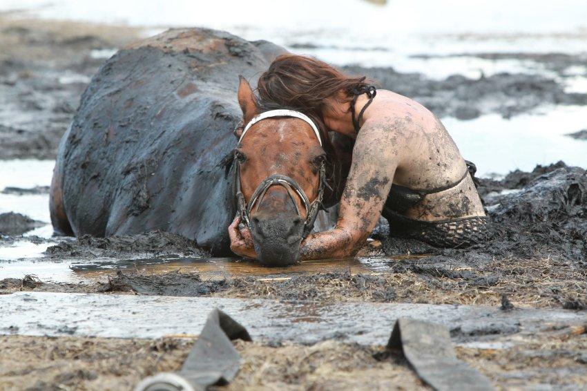 Николь Грэм обнимает тонущую лошадь