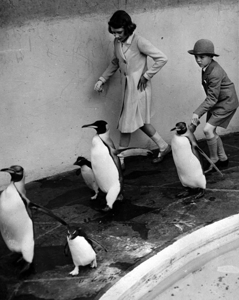 Елизавета в лондонском зоопарке 30 июня 1938 года
