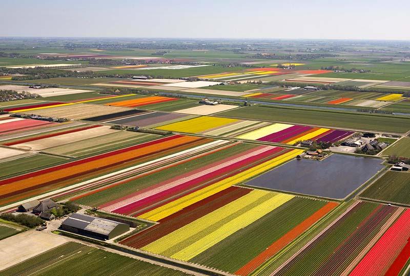Коробки с цветными карандашами по всей Голландии