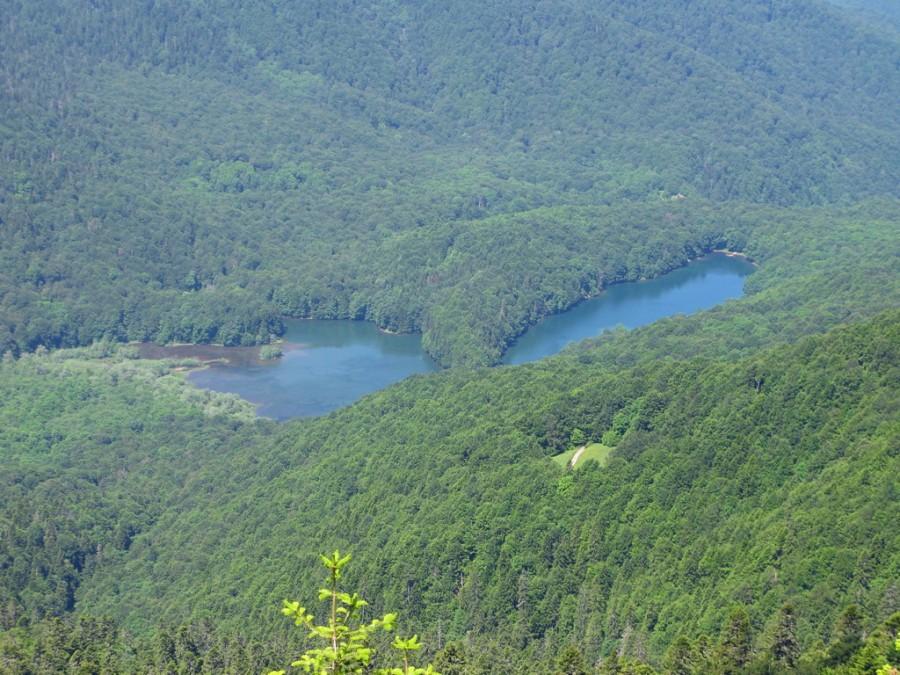 Биоградский заповедник, с уникальными лесными ресурсами