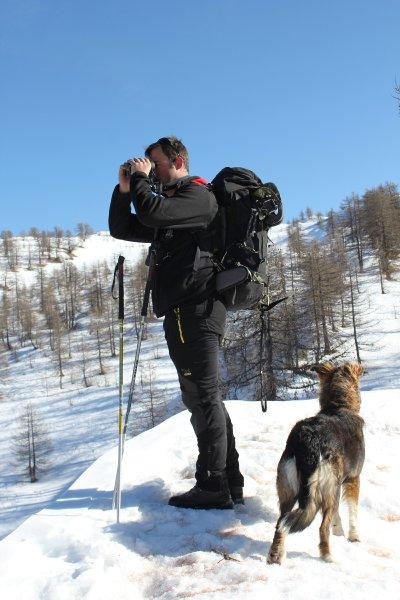 Маттиа Коломбо находится в Пьемонте, производит подсчет волков