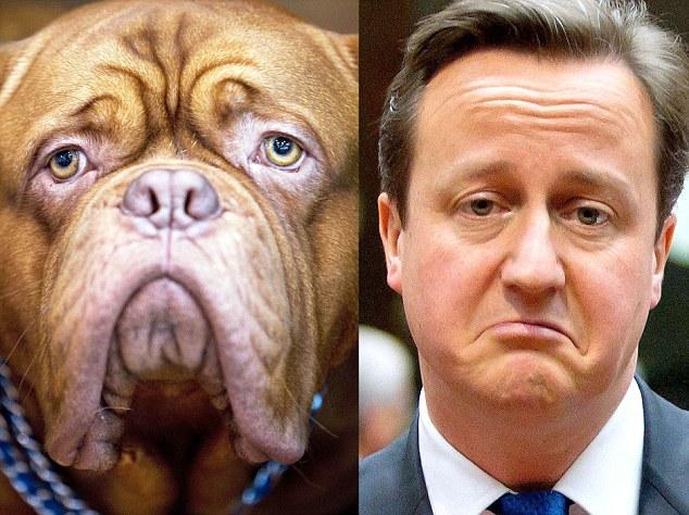 Премьер Министр Великобритании Дэвид Кэмерон
