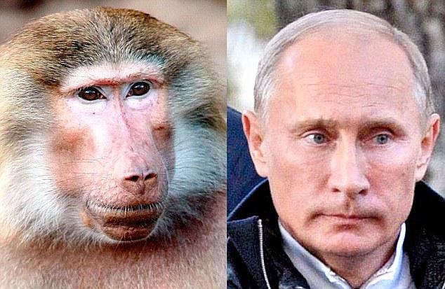 Вновь избранный президент России Владимир Путин