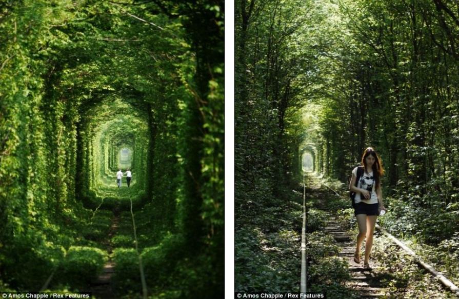 Туннель любви в Украине