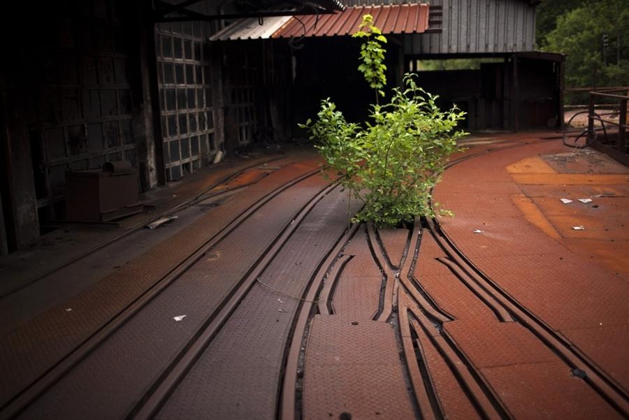 Угольный кризис в долине Турон
