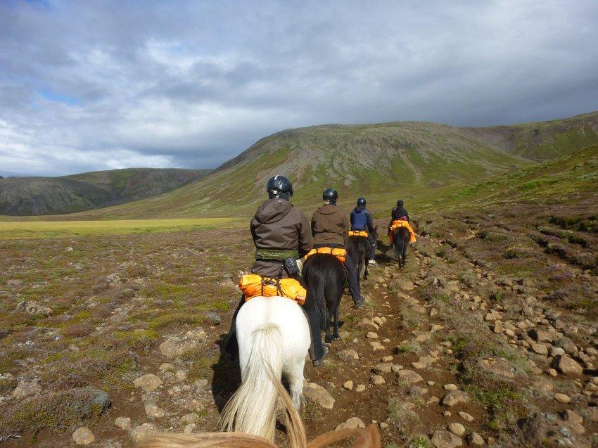 Около 30 000 любителей лошадей приезжают каждый год
