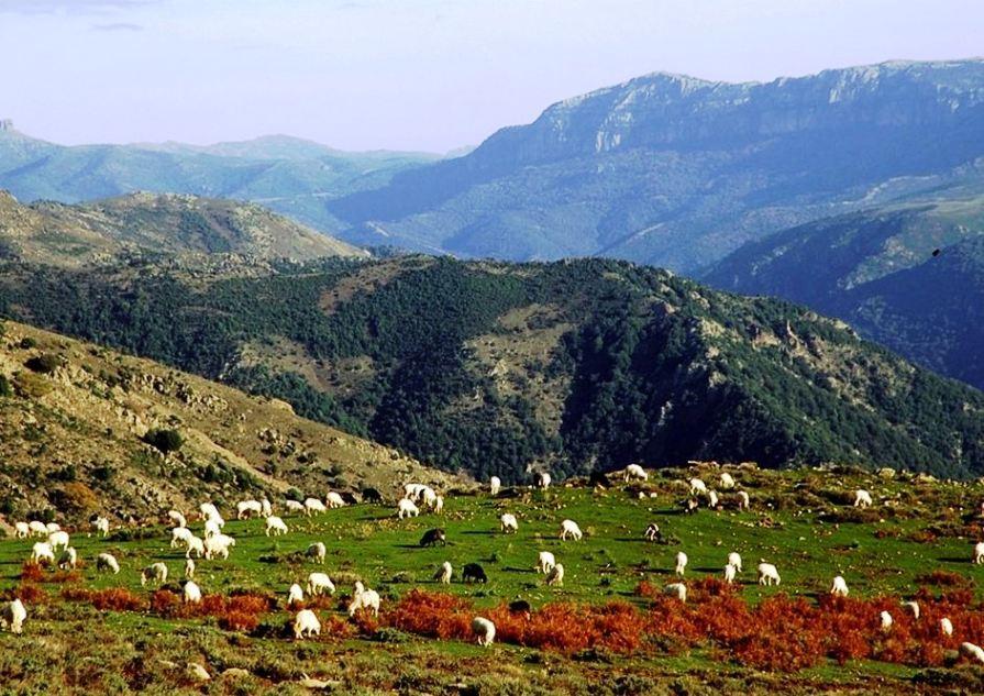 Восточное побережье Сардинии